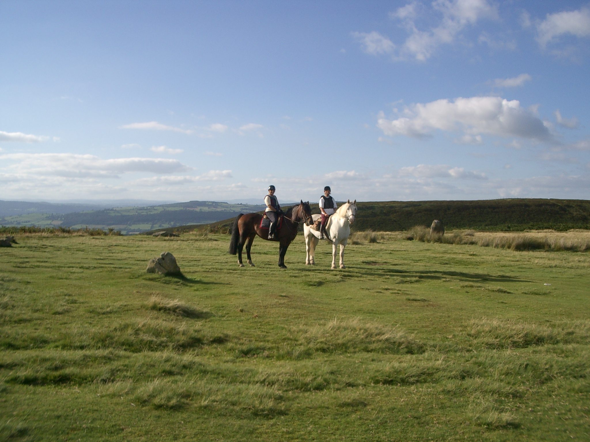 Horse rider on Long Mynd