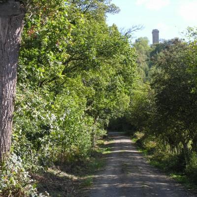 Ride Shropshire Route 2: Rushbury Ride image