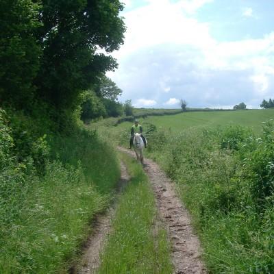 Jack Mytton Way Route 8: Wheathill to Cleobury image