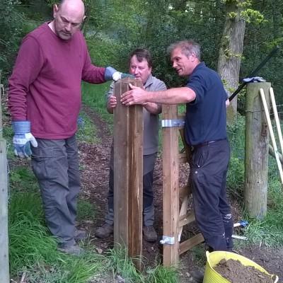 Shropshire Wild Teams image