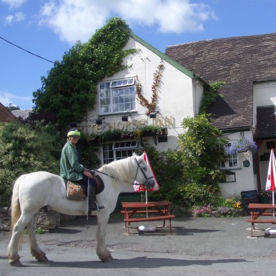 Humphrey Kynaston Way Route 2: Picklescott to Church Pulverbatch image