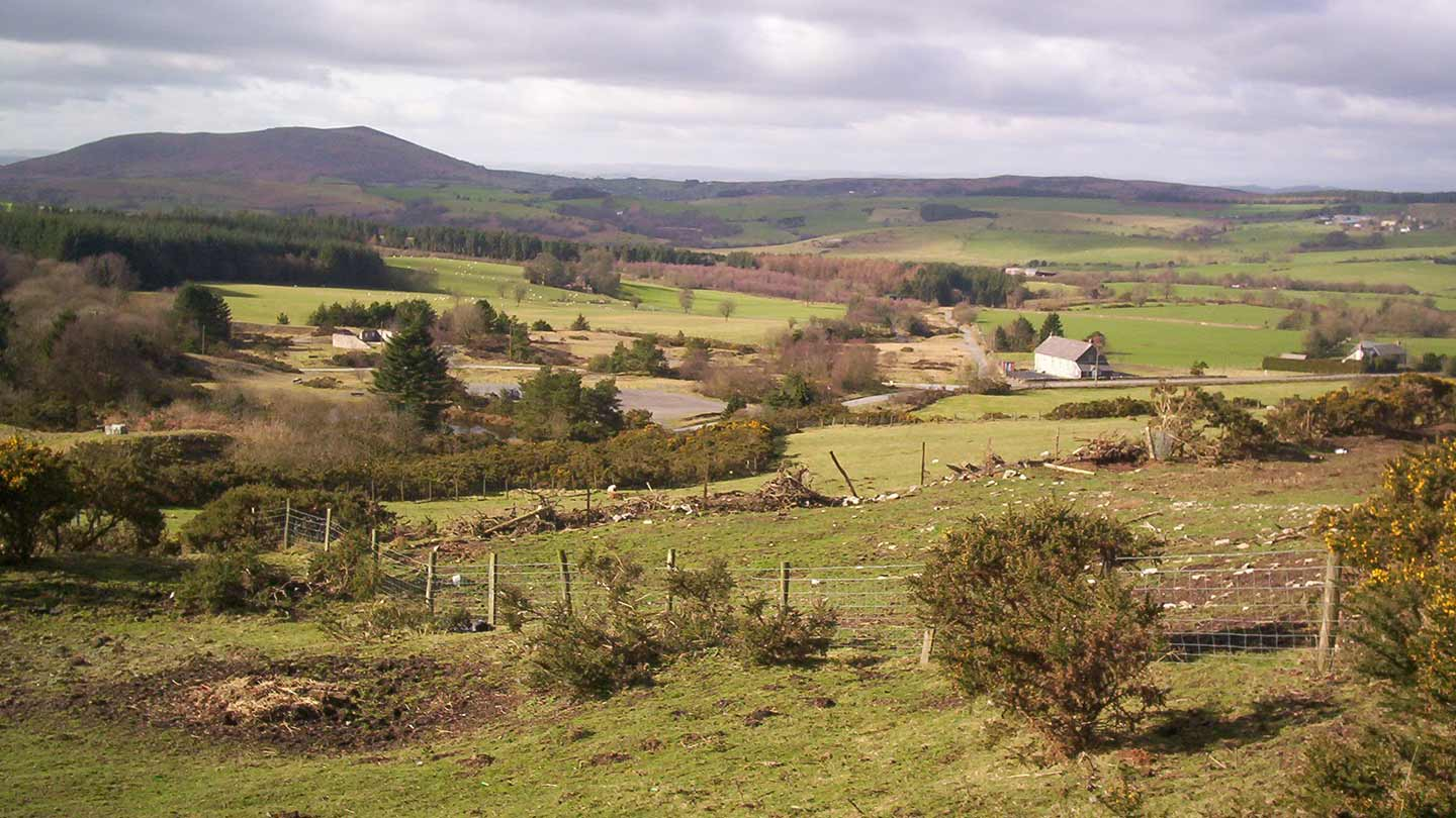 View across the fields with Bog Centre in the distance