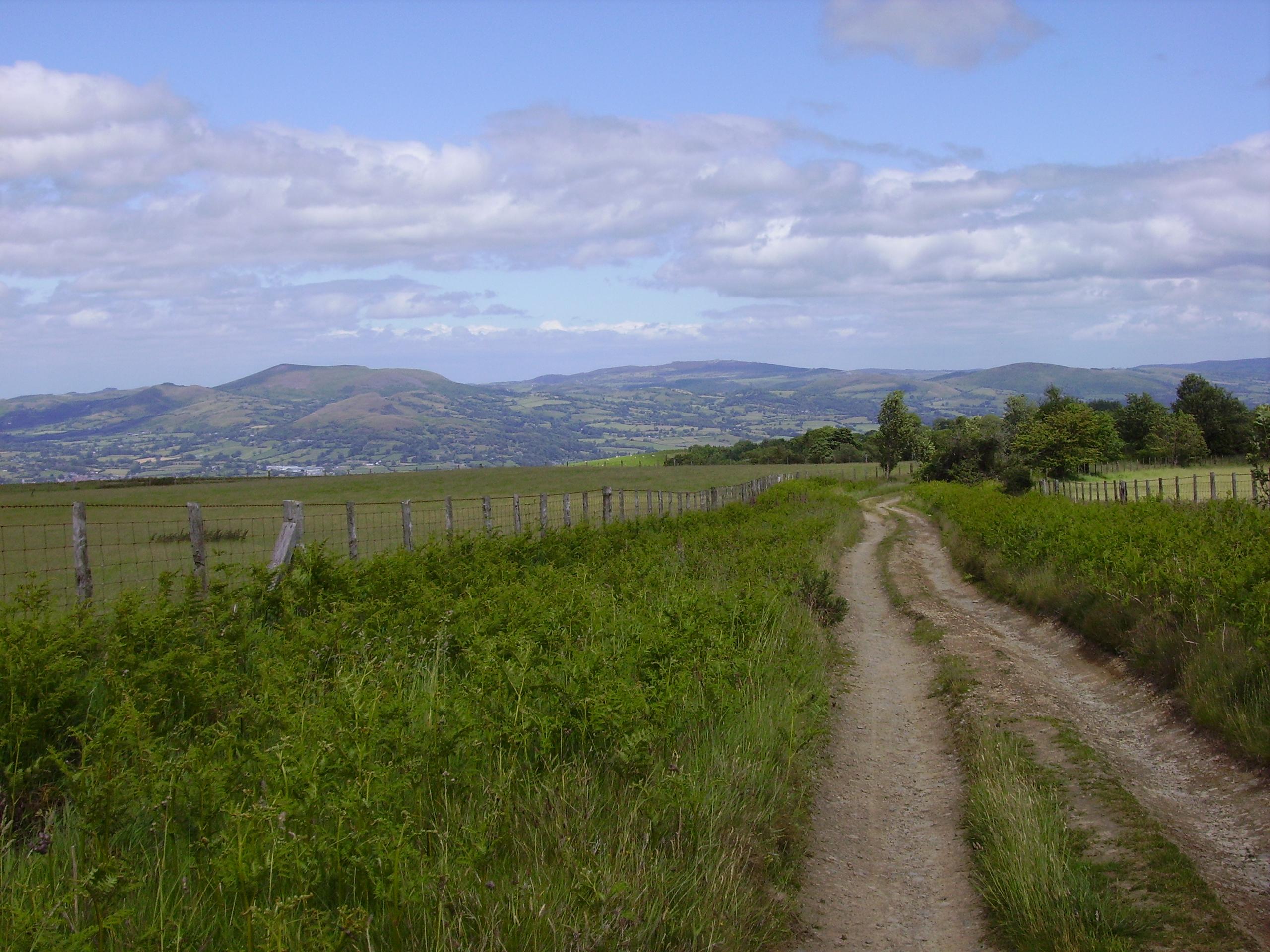 Kerry Ridgeway