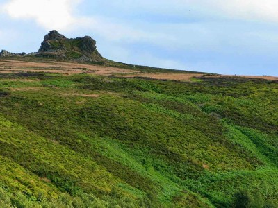 Take a bracing walk across the Stiperstones image