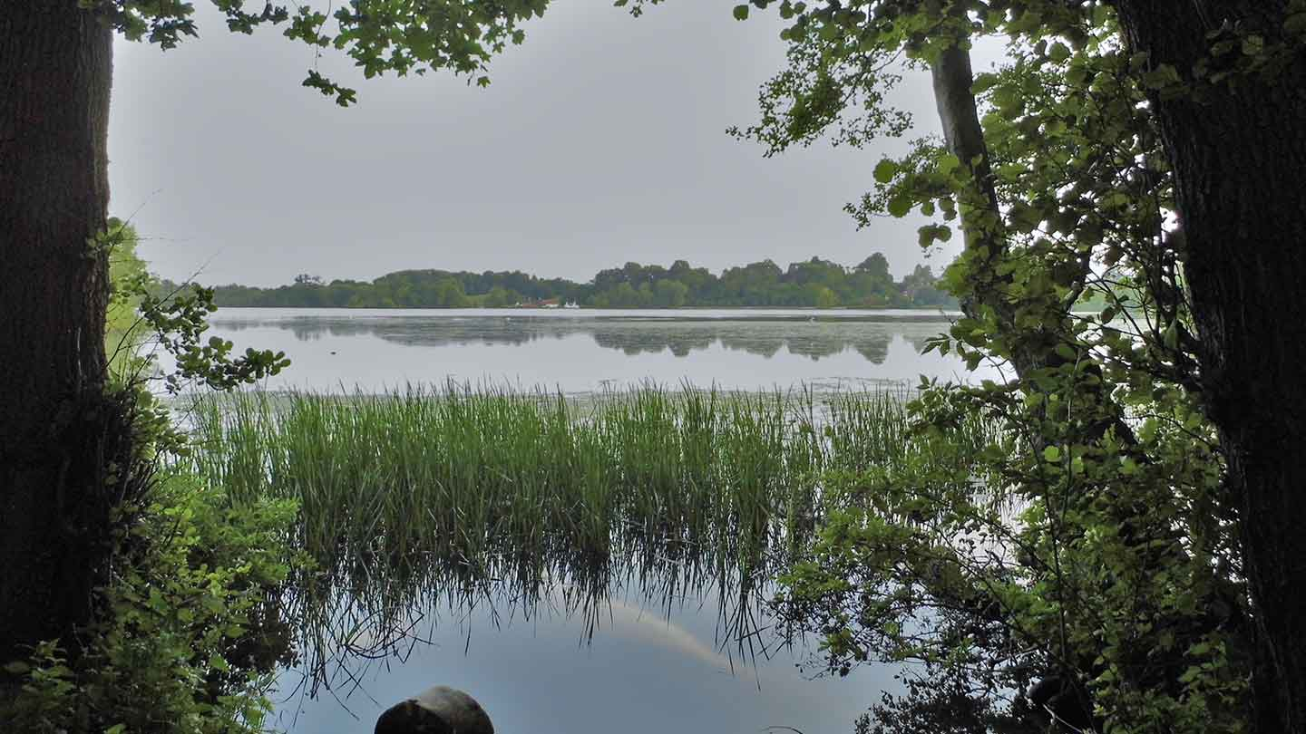 Take a walk from Colemere into Ellesmere image